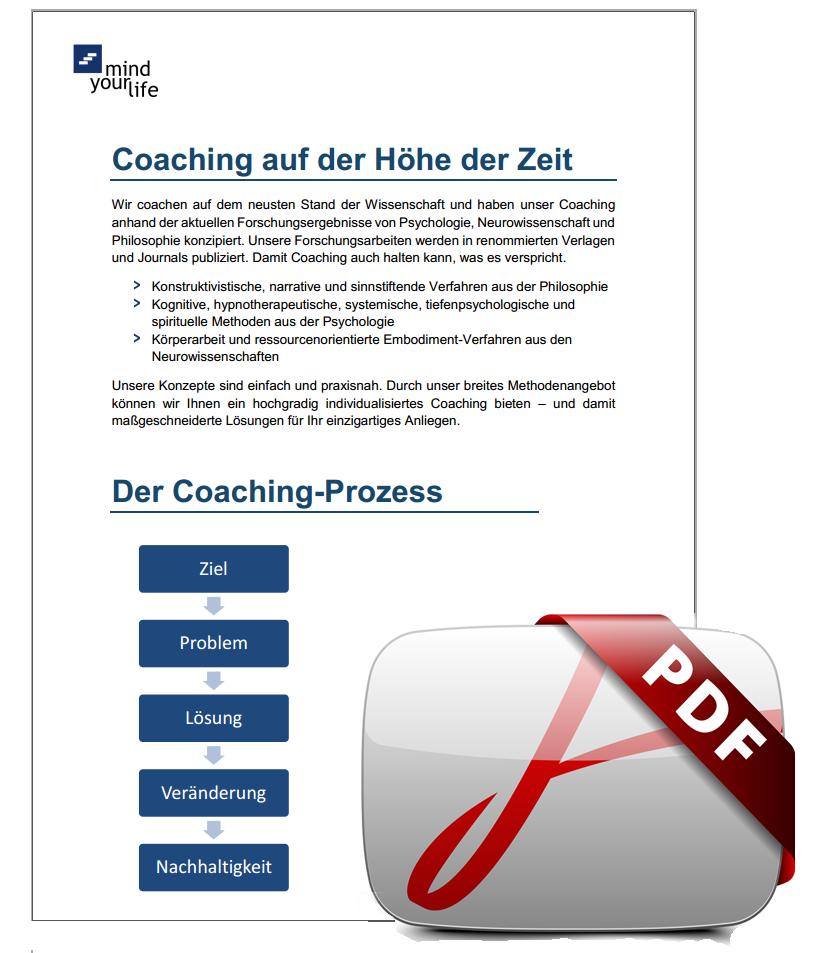 einzelcoaching prozess pdf