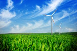 business coaching nachhaltigkeit