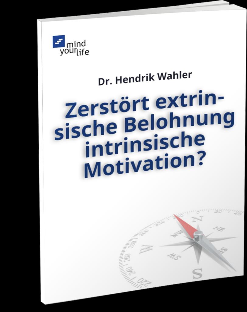 Extrinsische Belohnung und intrinsische Motivation   E